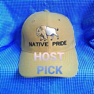 🥳HP🥳NWOT Native Pride Buffalo Hat